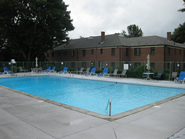 Swimming pool with tree and condo building in background