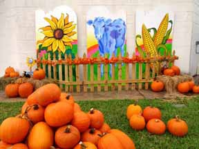 Pumpkin Patch Arkansas Greenbrier - games-za