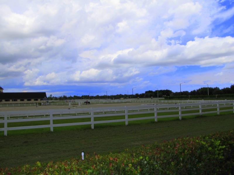 Equus Boynton Beach