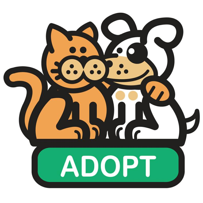 adopt a pet in northern nevada from the nevada humane society