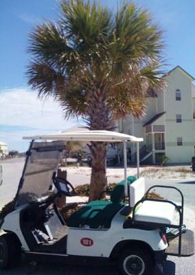 Indies Golf Carts in Fort Morgan