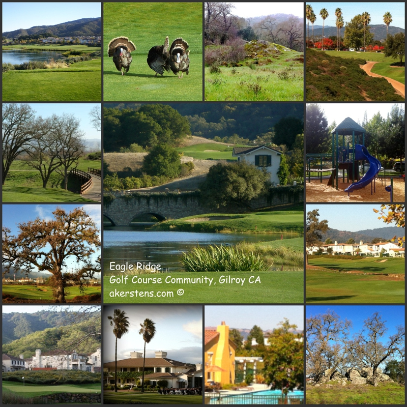 singles in gilroy 114 single family homes for sale in gilroy ca view pictures of homes, review sales history, and use our detailed filters to find the perfect place.