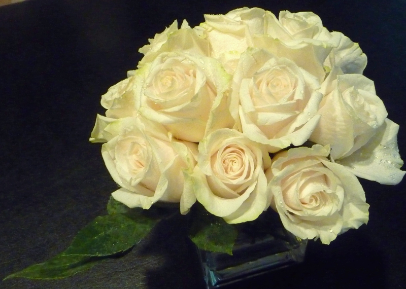 White Rose HomeRome 410-530-2400