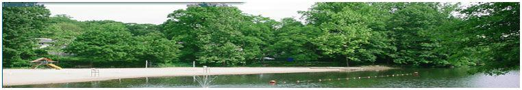 lionshead lake nj