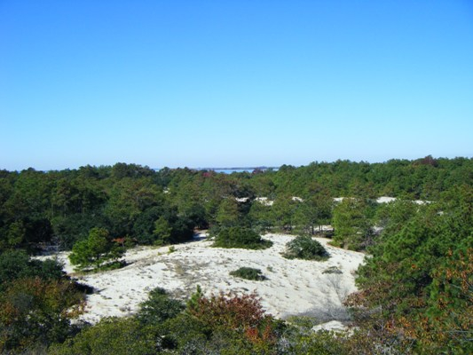 False Cape in Virginia Beach - Dunes and Beach