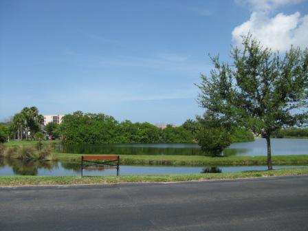 Shores of Long Bayou in Seminole