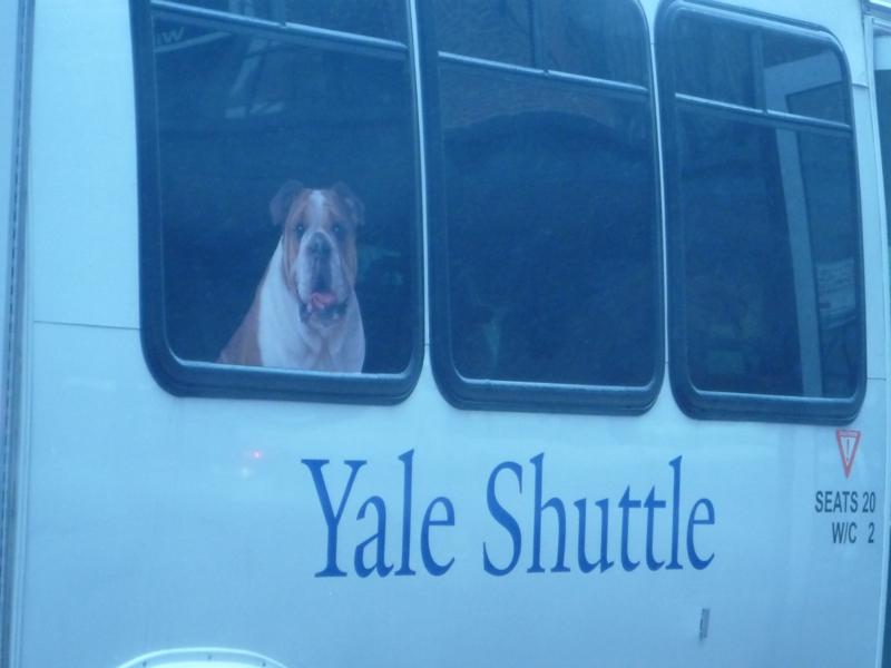 Yale Shuttle