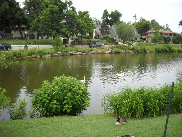 Swan Lake in midtown Tulsa