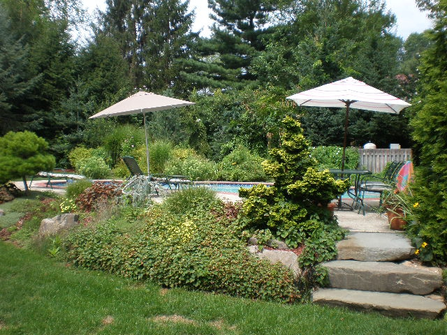 backyard oasis no need for vacations when you can vacation at home