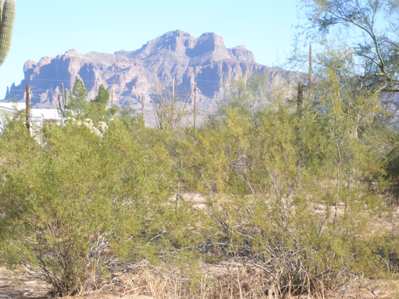 Boulder Mountain Subdivision Homes for Sale with a View in Mesa AZ