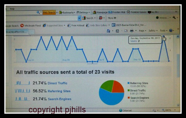 graph 092011 visit to google analytics