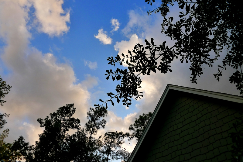 A beautiful TX sky, 9661 Roda, Open House TODAY 1-22-2012, Conroe TX, 2.5ac, built in 2006, 3br/2ba, keller williams conroe, mari montgomery realty, homes for sale real estate