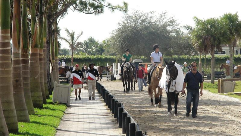 winter equestrian festival wellington Florida