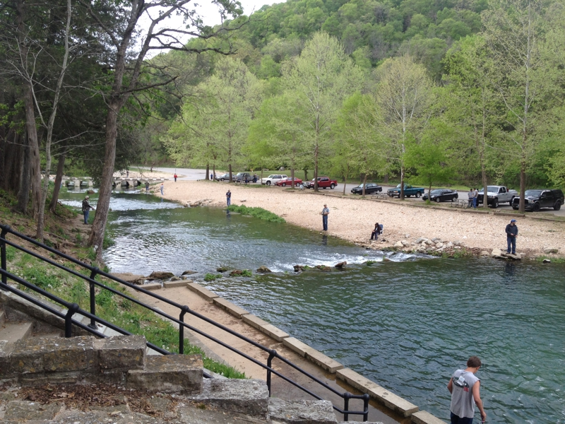 What is going on in and around springfield mo july 27 28 for Roaring river fish hatchery