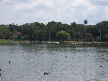 Lakeland FL - Lake Morton