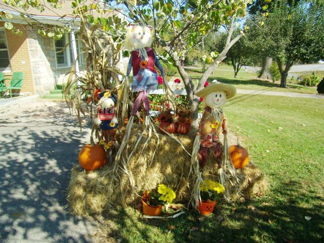 Hayesville NC Home Fall Display