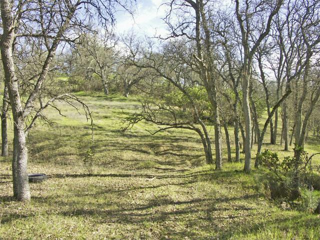 ar12552780821706 Northern California Land for Sale   1.5 Acres of Oak Studded Land   $15,000   Rancho Tehama CA!