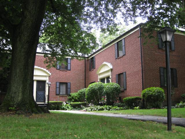 Brick townhouses in Watertown MA with green lawn and large tree