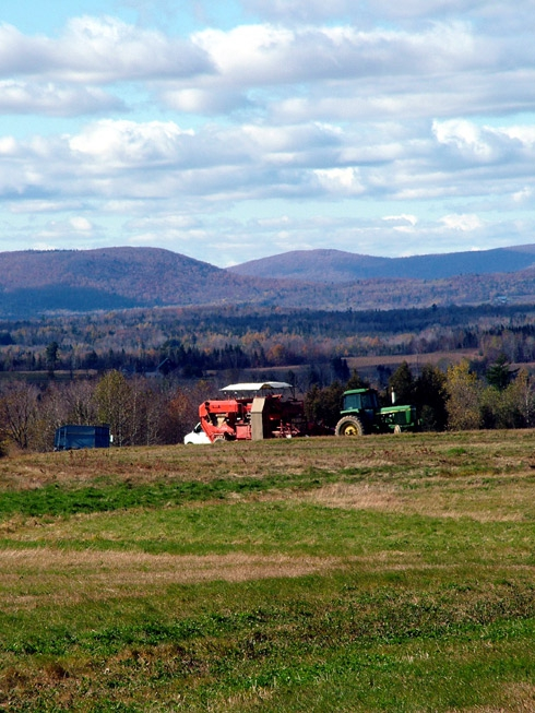 maine farm harvest operation