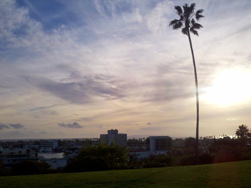Cliff Park Drive View