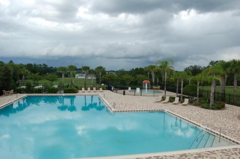 Homes For Sale In Stoneybrook Mount Dora Fl