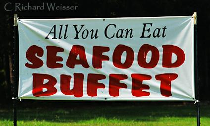 All You Can Eat Seafood Buffet At The Hollow Restaurant In Newnan