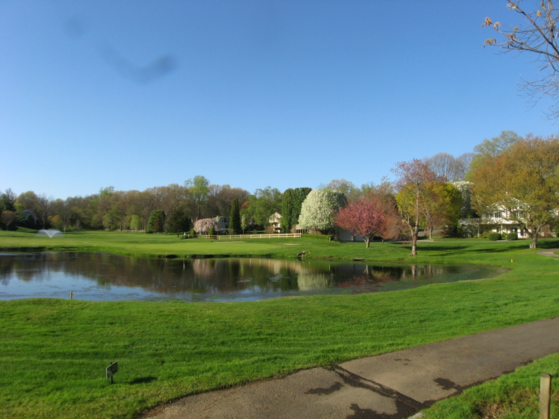 Silvermine Woods - Is It a Resort Or Condo? Wilton, CT 06897