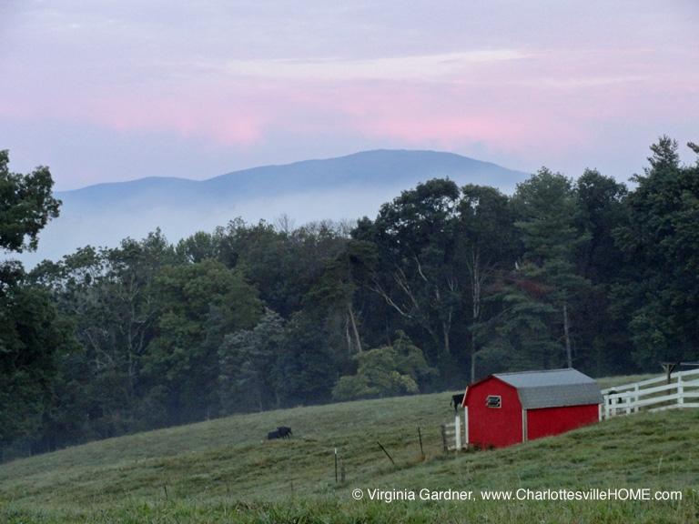 farm along Bleak House Rd in Earlysville at dawn in August 2011