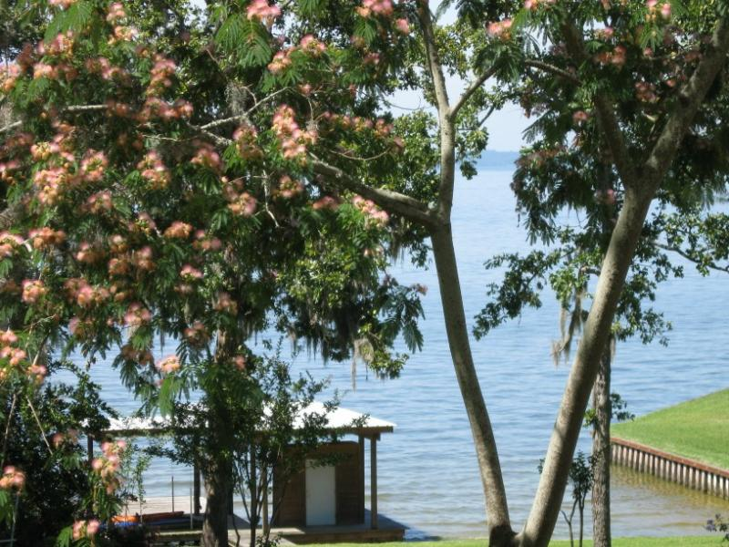 Lake Livingston Real Estate--beauty, waterfront, lakehouse