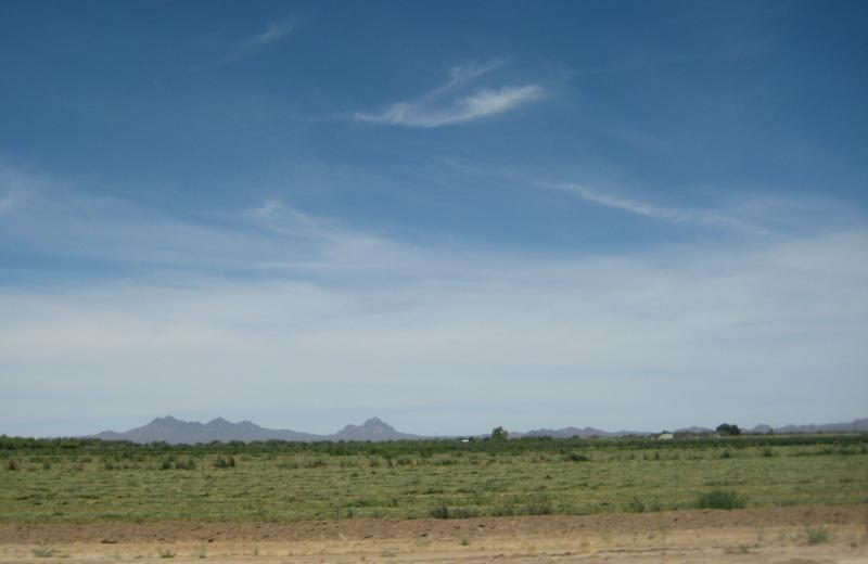 looking west from Rancho Marana with blue sky and mountains