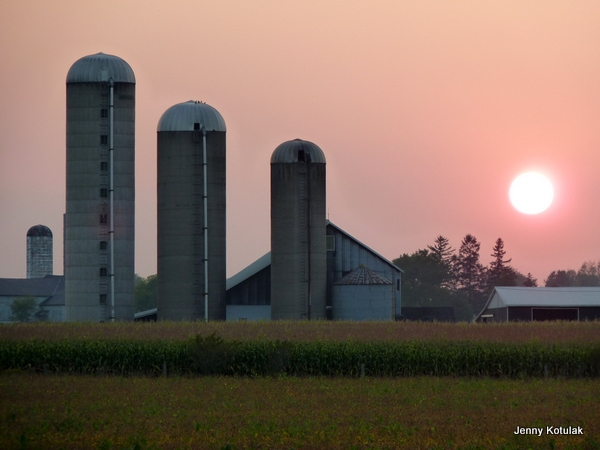Ontario farms, Shakespeare Ontario, Shakespeare farms, Farm sunset, farm country Ontario, Jenny Kotulak photo, back roads Ontario,
