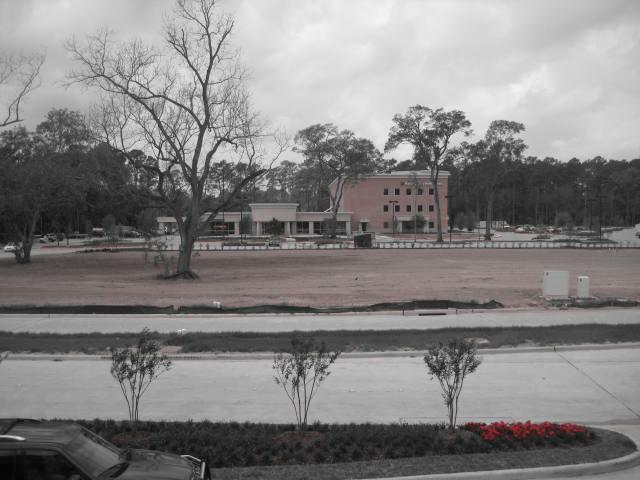 kelsey seybold vintage park