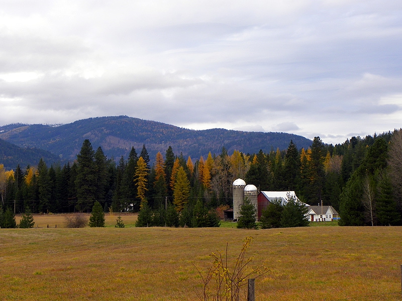 North Idaho Autumn Colors