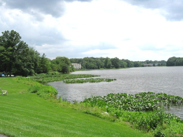 Townhomes and homes on Swarthout Lake in Congers New York