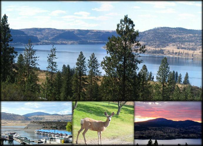 Lake Roosevelt Collage