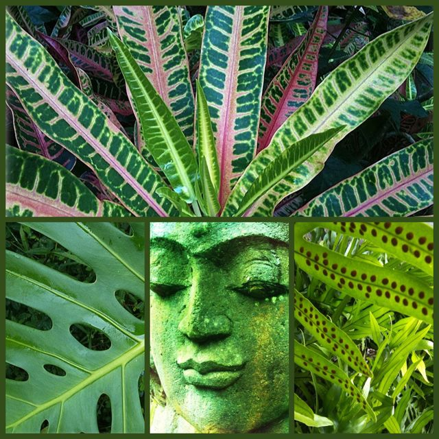 Silent Saturday - garden goddess in Haiku Maui HI
