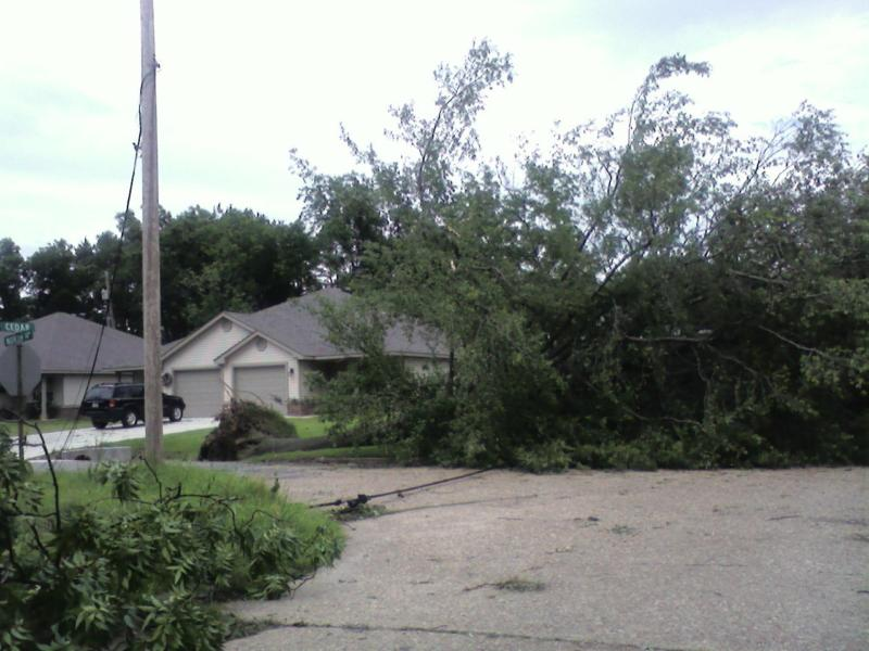 Uprooted tree and more down power lines