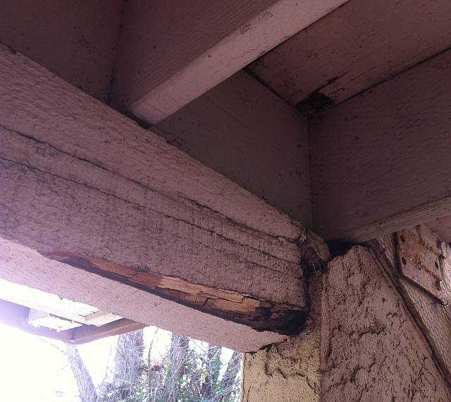 Where You Have Dry Rot Matters Some Boards Are More