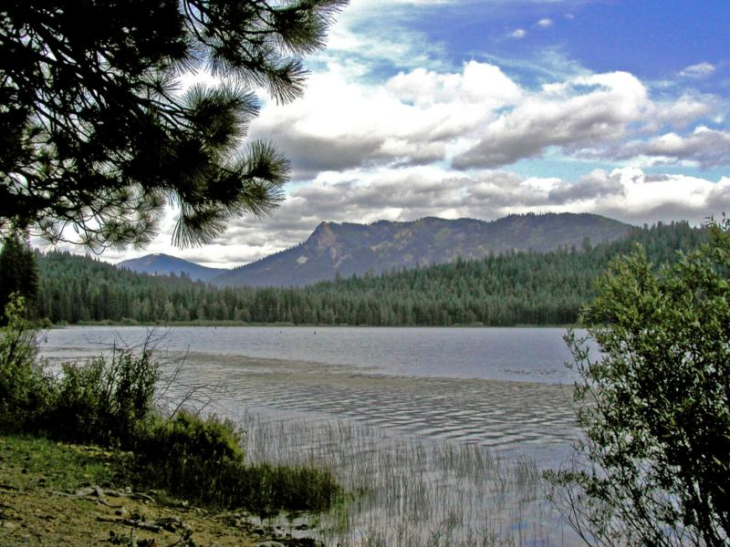 ar125042783109926 Redding Properties and Land For Sale ~ California Ranch and Land ~ Waterfront Property!