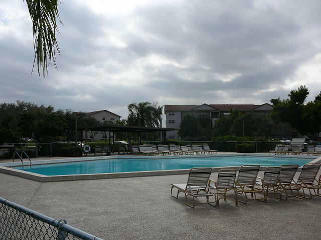Century Village Pool-Neal Bloom copyright 2011