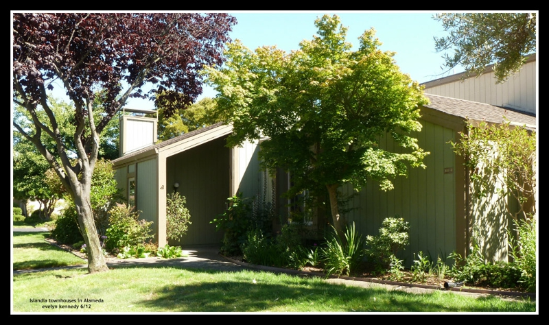 Islandia townhouse in Alameda photo by evelyn kennedy 6/12