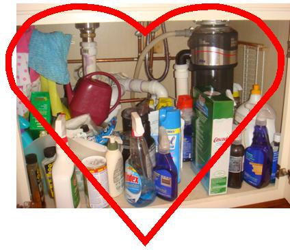 kitchen sink love