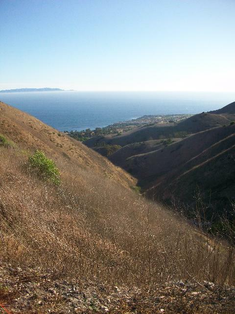 Del Cerro Park in Palos Verdes - Photo by Nat Toering of Rising Sun Photogrpahy