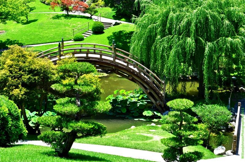 Japanese gardens at the huntington - Huntington beach botanical garden ...