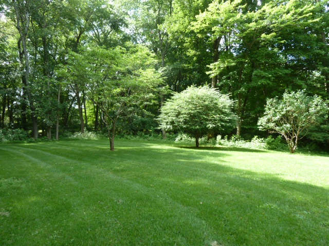 level yard 4 BR colonial Wilton CT 06897