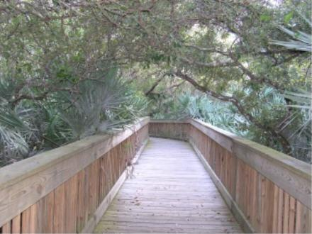 Ponce Inlet nature trail