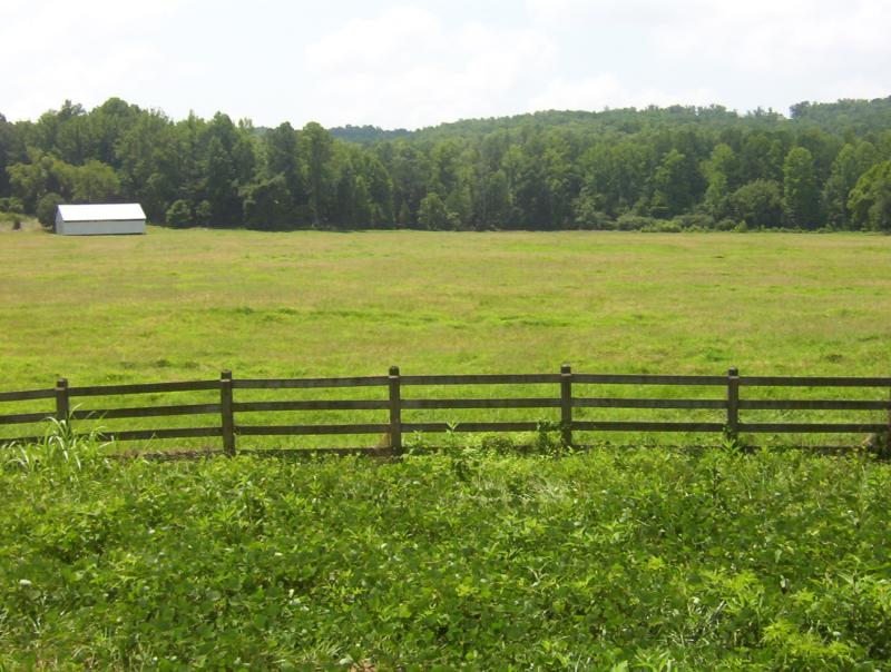 Pasture associated with this great home and Horse farm