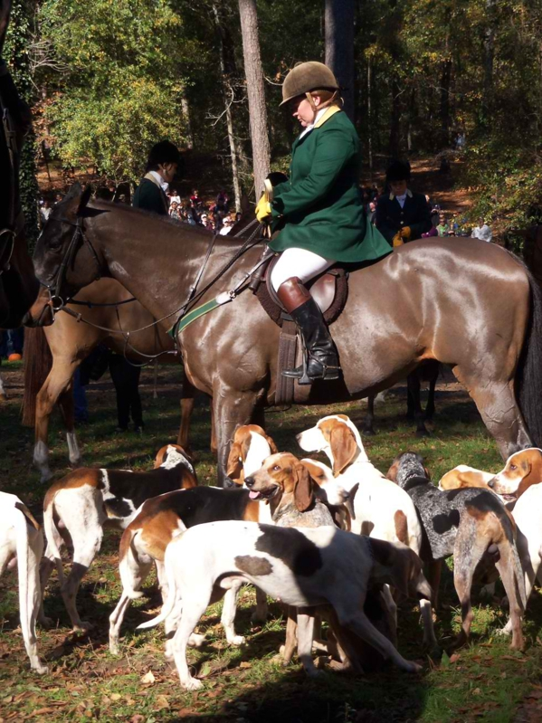 Blessing of the Hounds - Hitchcock Woods, Aiken, SC
