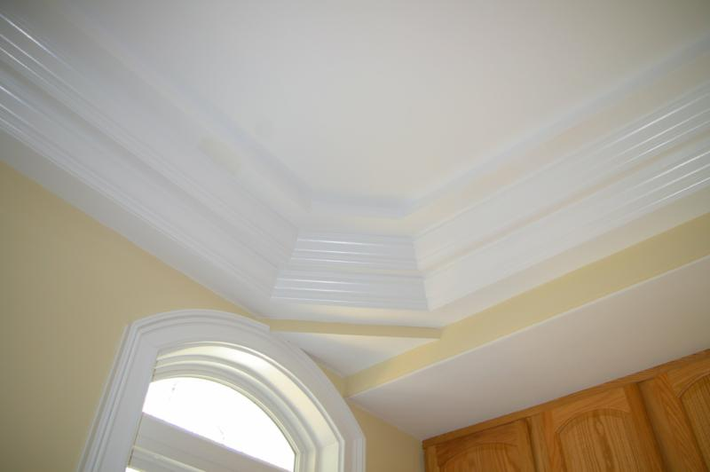Todays Ceilings Make Statements Types of Ceilings and  : ar120468969958746 from activerain.com size 800 x 532 jpeg 23kB