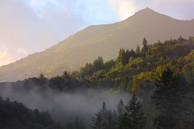 Buying a home in Marin County - Mt. Tamalpais